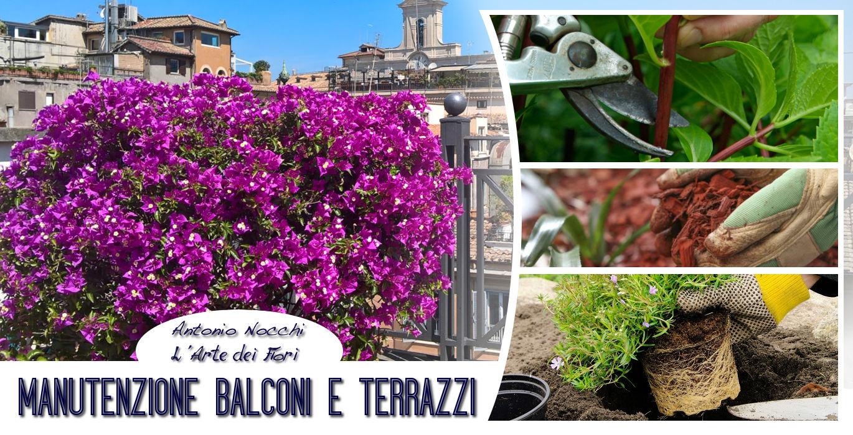 Manutenzione balconi e terrazzi a roma l 39 arte dei fiori for Balconi e terrazzi