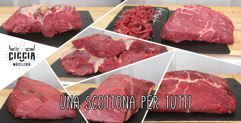 Carne di Scottona a Roma